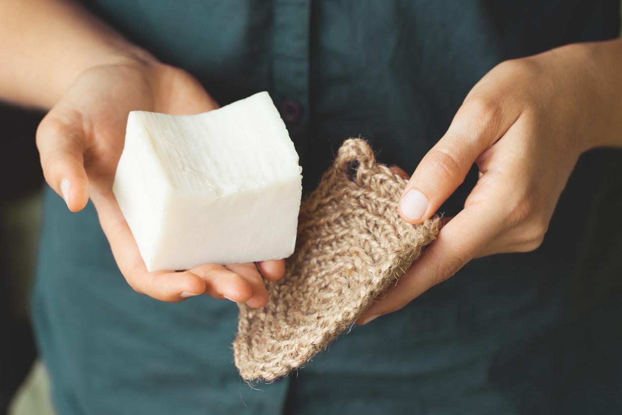 Kit de nettoyage écologique dans la main de la femme