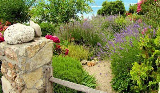 Jardin Sans Pelouse